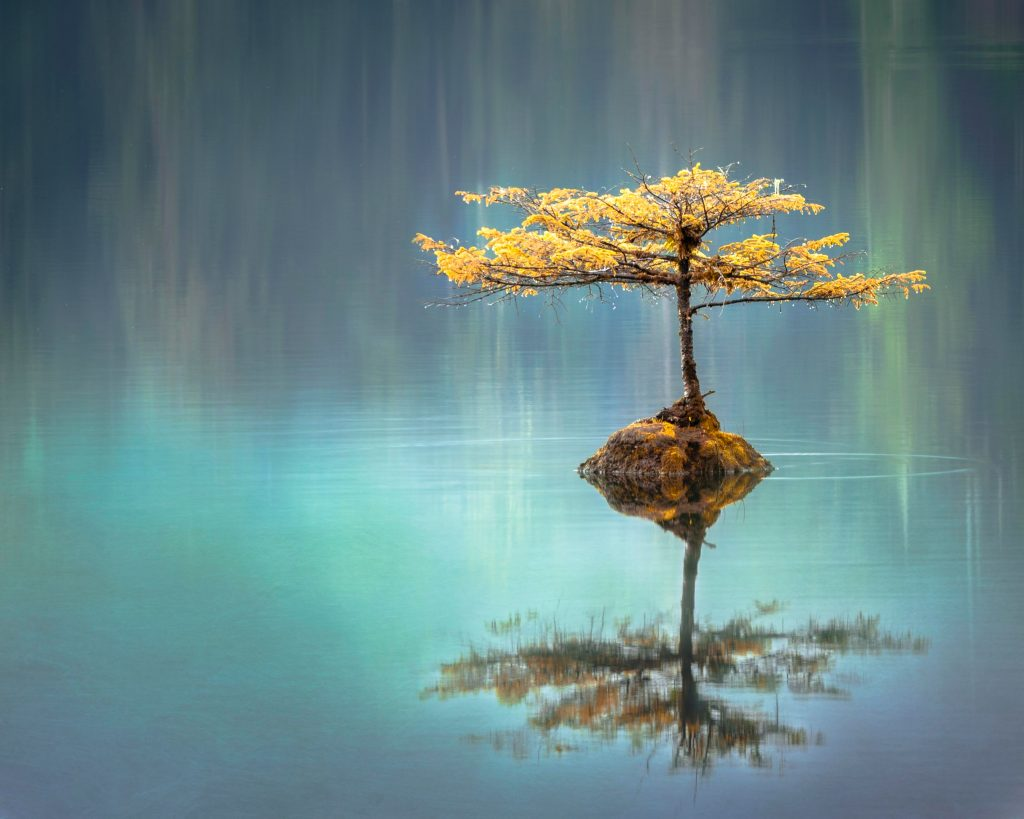 mindfulness, meditation calm down jar,
